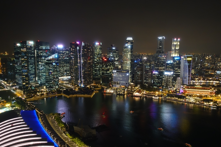 02 Marina Bay Sands Skypark
