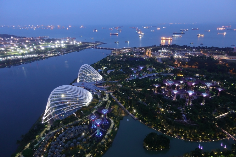 03 Marina Bay Sands Skypark Gardens by the Bay view