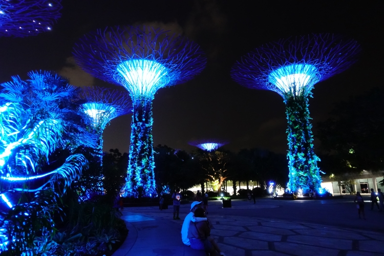 05 Gardens by the Bay night