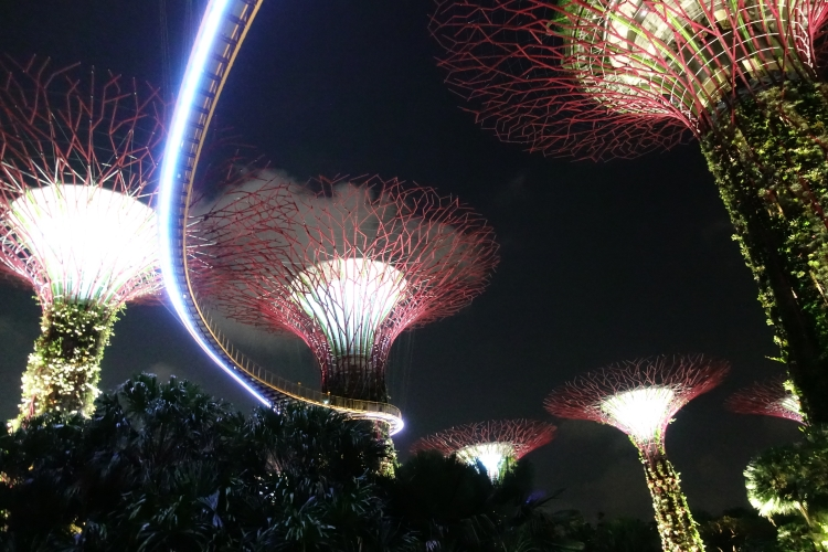 06 Gardens by the Bay