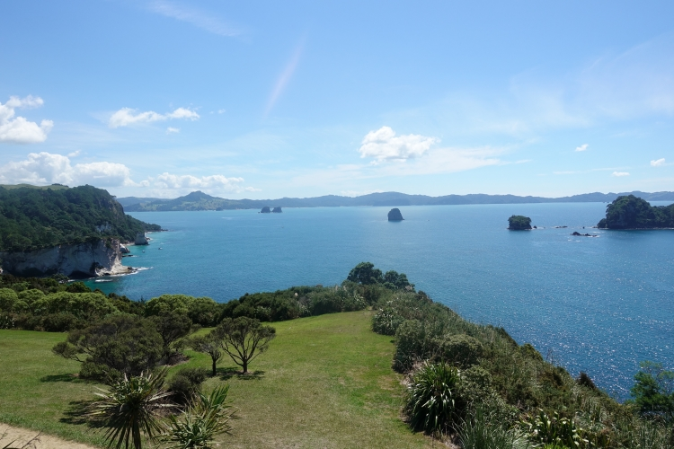 07 Cathedral Cove lookout