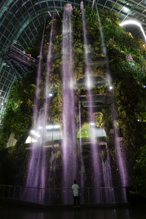 08 Cloud Forest waterfall