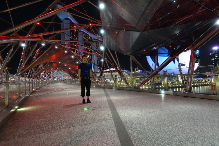 18 Helix Bridge night self portrait