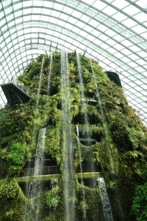 02 Cloud Forest Singapore