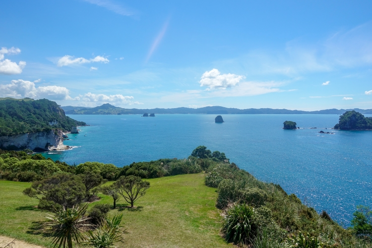 05 Cathedral Cove car park lookout